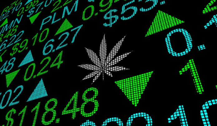 Why Should You Invest In Cannabis