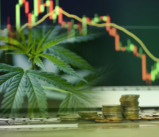 Are cannabis investment a good idea?