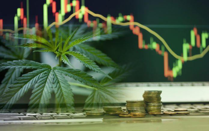 Are cannabis investment a good idea?