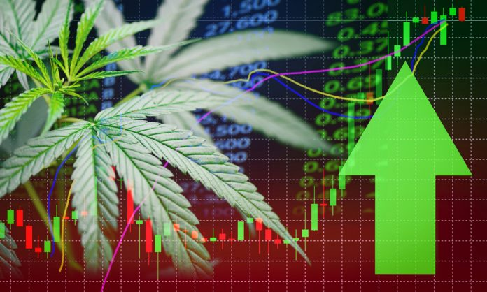 Cannabis Investment In Canada