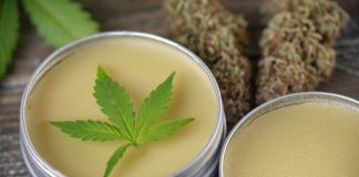 Everything You've Ever Wanted To Know About CBD (But Were Too Afraid To Ask)