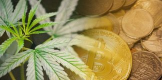 The global legal marijuana market size is expected to reach USD 66.3 billion by the end of 2025