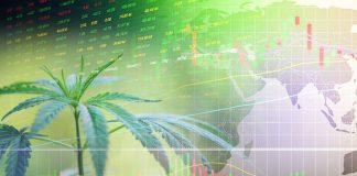 Big data and the cannabis industry