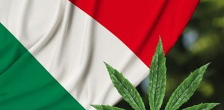 Italy's New Government Could Legalize Cannabis